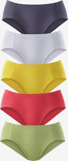 PETITE FLEUR Majtki w kolorze żółty / grafitowy / jabłko / żurawinowy / białym, Podgląd produktu