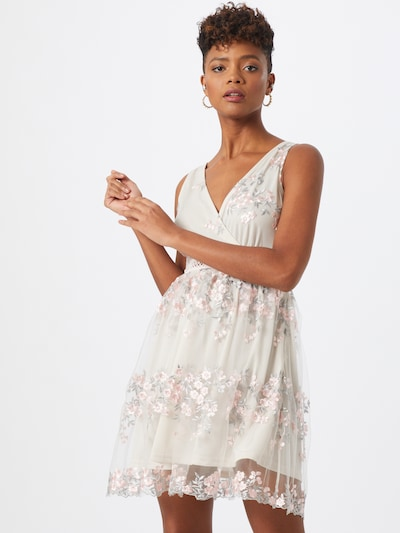 Boohoo Kleid 'Floral Embroidered Mesh Skater Dress' in mint / rosa, Modelansicht
