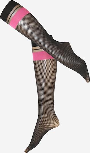 FALKE Najlonske nogavice | roza barva, Prikaz izdelka