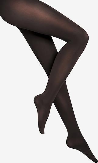 fekete Wolford Harisnyanadrág 'Velvet de Luxe 66 Comfort Tigh', Termék nézet