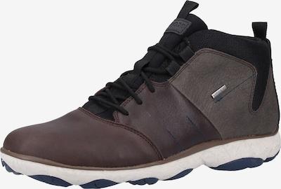 GEOX Sneaker in schoko / dunkelbraun / greige / schwarz: Frontalansicht