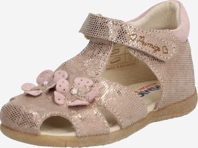 PRIMIGI Sandale  'ST.LAMINAT' in braun, Produktansicht