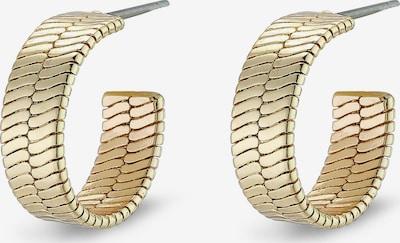 Pilgrim Boucles d'oreilles 'Yggdrasil' en or: Vue de face