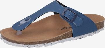 DR. BRINKMANN T-Bar Sandals in Blue
