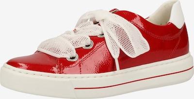 ARA Sneaker in rot / weiß, Produktansicht