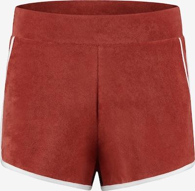 Shiwi Spodnie 'Terry' w kolorze wiśniowo-czerwonym, Podgląd produktu
