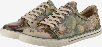 DOGO 'Where Am I?' Sneakers Low in grün / puder, Produktansicht