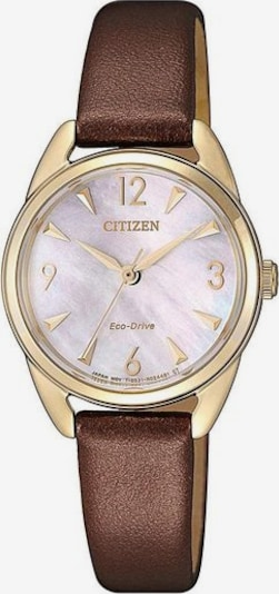 CITIZEN Uhr 'EM0686-14D' in braun / gold, Produktansicht