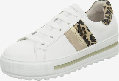 GABOR Sneakers laag in de kleur Zwart / Wit: Vooraanzicht