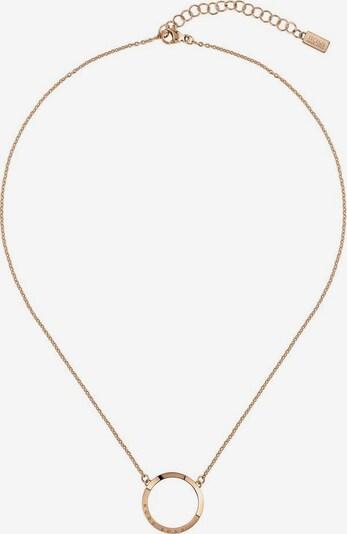 BOSS Kette  'Ophelia, 1580030' in rosegold, Produktansicht