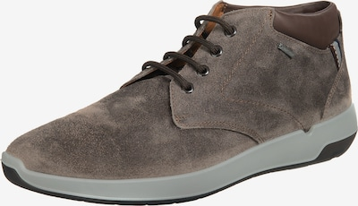 LLOYD VEALE Sneakers Low in cognac, Produktansicht