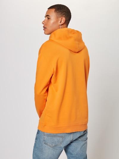 Tommy Jeans Sweatshirt in orange / weiß: Rückansicht