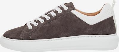 Bianco Sneakers in Beige / Light brown, Item view