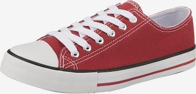 ambellis Sneaker in bordeaux, Produktansicht