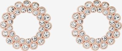 Ted Baker Náušnice 'AULUNA' - růžově zlatá, Produkt