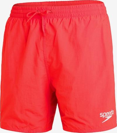 SPEEDO Badeshorts in rot / weiß, Produktansicht