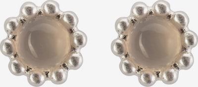 Sence Copenhagen Ohrringe in beige / silber, Produktansicht