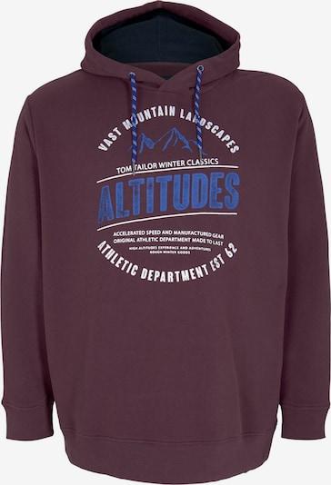 TOM TAILOR Men Plus Sweatshirt in royalblau / beere / weiß, Produktansicht