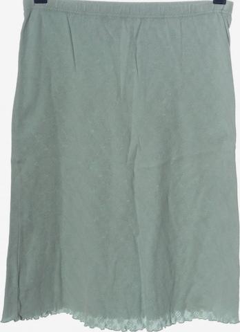 HESSNATUR Skirt in M in Blue