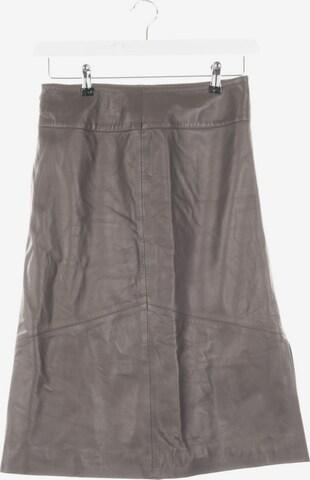 Schyia Skirt in S in Grey