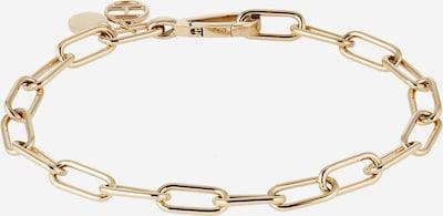 TOMMY HILFIGER Armband in gold, Produktansicht