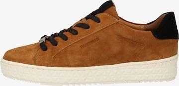 SANSIBAR Sneakers in Brown