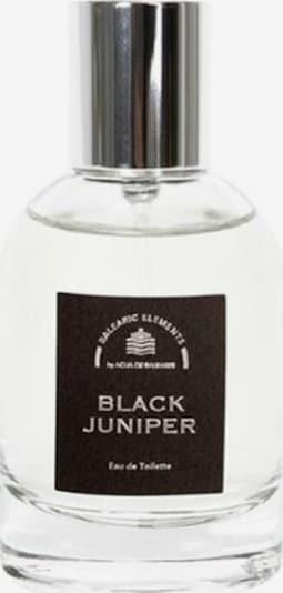 Agua de Baleares Eau de Toilette 'Black Juniper' in transparent, Produktansicht