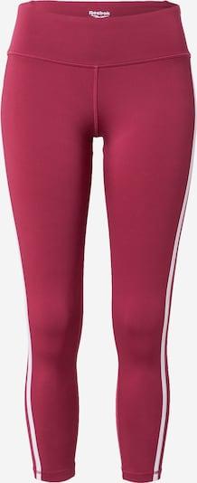Reebok Sport Спортен панталон в питая / бяло, Преглед на продукта