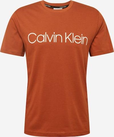 Calvin Klein T-Shirt in rostbraun / weiß, Produktansicht
