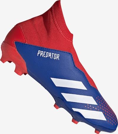 ADIDAS PERFORMANCE Fußballschuh 'Predator 20.3' in blau / rot / weiß, Produktansicht