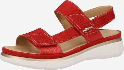 ROHDE Sandalen in rot, Produktansicht