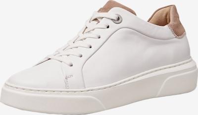 LLOYD Sneaker in beige / weiß, Produktansicht