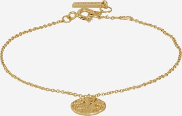 ANIA HAIE Käevõru 'Greek Warrior', värv Kuld