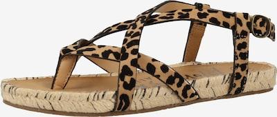 Blowfish Malibu Sandals in Brown / Chestnut brown, Item view