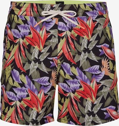 Pantaloni scurți apă O'NEILL pe verde măr / mov deschis / roșu deschis / negru, Vizualizare produs