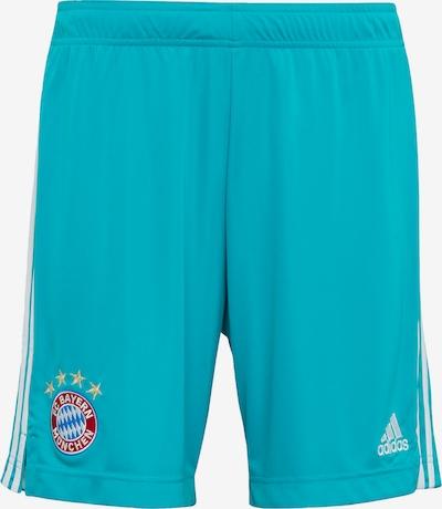ADIDAS PERFORMANCE Sportbroek 'FC Bayern München' in de kleur Cyaan blauw, Productweergave