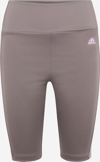 ADIDAS PERFORMANCE Спортен панталон в Грейдж / бледорозово, Преглед на продукта