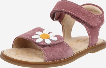 Sandales 'Zenzi' LURCHI en rose