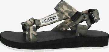 Palladium Sandale in Grün