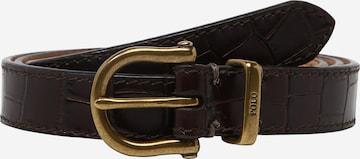 Polo Ralph Lauren Gürtel in Braun