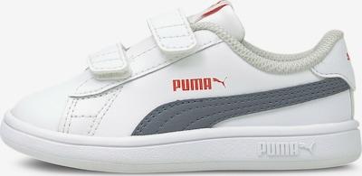 PUMA Sneaker 'Smash v2' in nachtblau / rot / weiß, Produktansicht