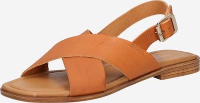 Sandale Shoe The Bear pe maro coniac, Vizualizare produs