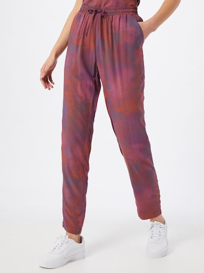 Iriedaily Hose in mischfarben, Modelansicht