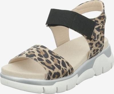 GERRY WEBER SHOES Sandale 'Arzignano' in beige / braun / schwarz, Produktansicht