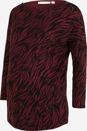 JoJo Maman Bébé Shirt in weinrot / schwarz, Produktansicht