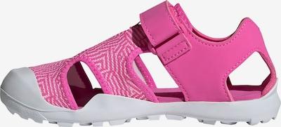 adidas Terrex Sandale in pink / weiß, Produktansicht