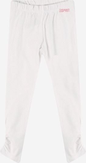 ESPRIT Leggings en rosa / blanco, Vista del producto