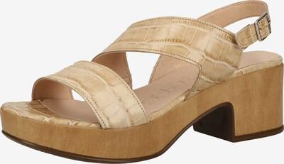 Wonders Sandalen met riem in de kleur Sand, Productweergave
