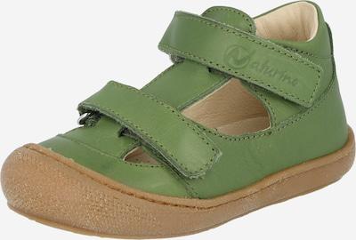 NATURINO Отворени обувки 'HONEY' в зелено, Преглед на продукта