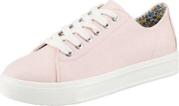 ambellis Sneakers in Pink